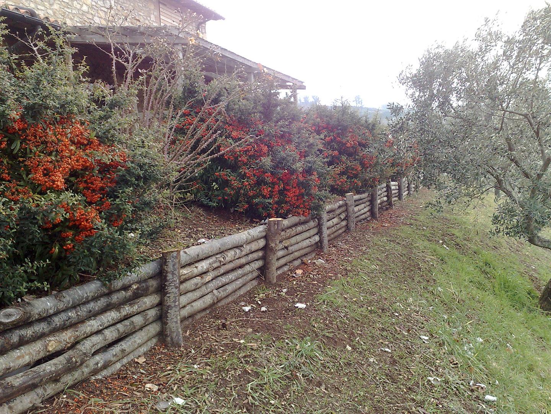 Strutture in legno vivaio bellucci e stefanelli todi for Cespugli giardino