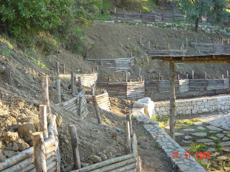 strutture in legno vivaio bellucci e stefanelli todi