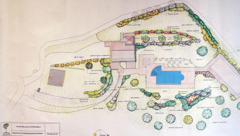 Progettazione di giardini vivaio bellucci e stefanelli todi for Pianta esterna