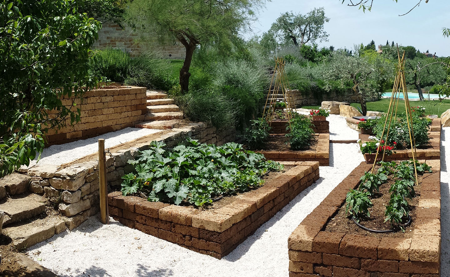 Ornamental Vegetable Gardens