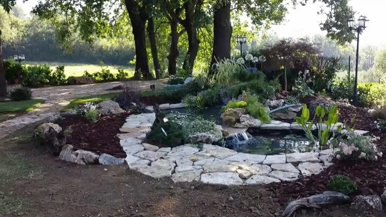 Giardini acquatici vivaio bellucci e stefanelli todi for Allestimento giardino